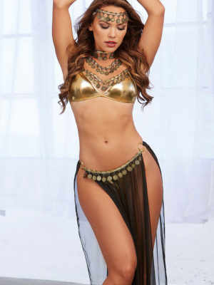Dreamgirl Harem Gypsy Girl With Bra Top, G-string Skirt & Accessories
