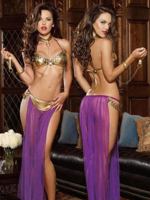 Dreamgirl Harem Slave Girl With Bra Top, Thong And Skirt, Collar Leash