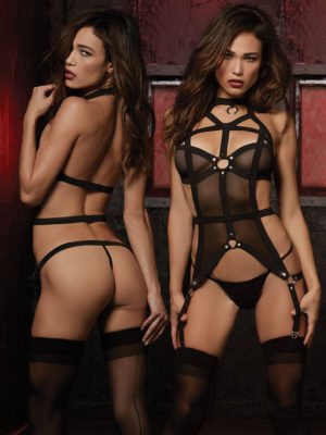 Dreamgirl Fantasy Strappy Sheer Bustier And G-string Set