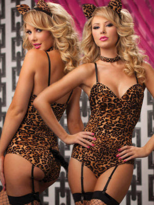Seven Til' Midnight Kinky Kitty Cat 4 Piece Sexy Outfit