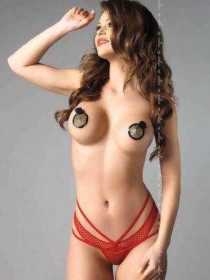 Me Seduce 'amber' Erotic Fantasy Sheer G-string Knickers (red)